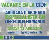 vacante-cidh