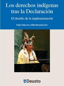 Los-DDHH-Indigenas-tras-la-declaracion1