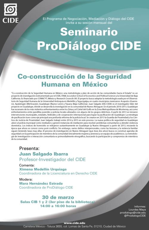 cide_seminario_co-construccion_de_la_seguridad